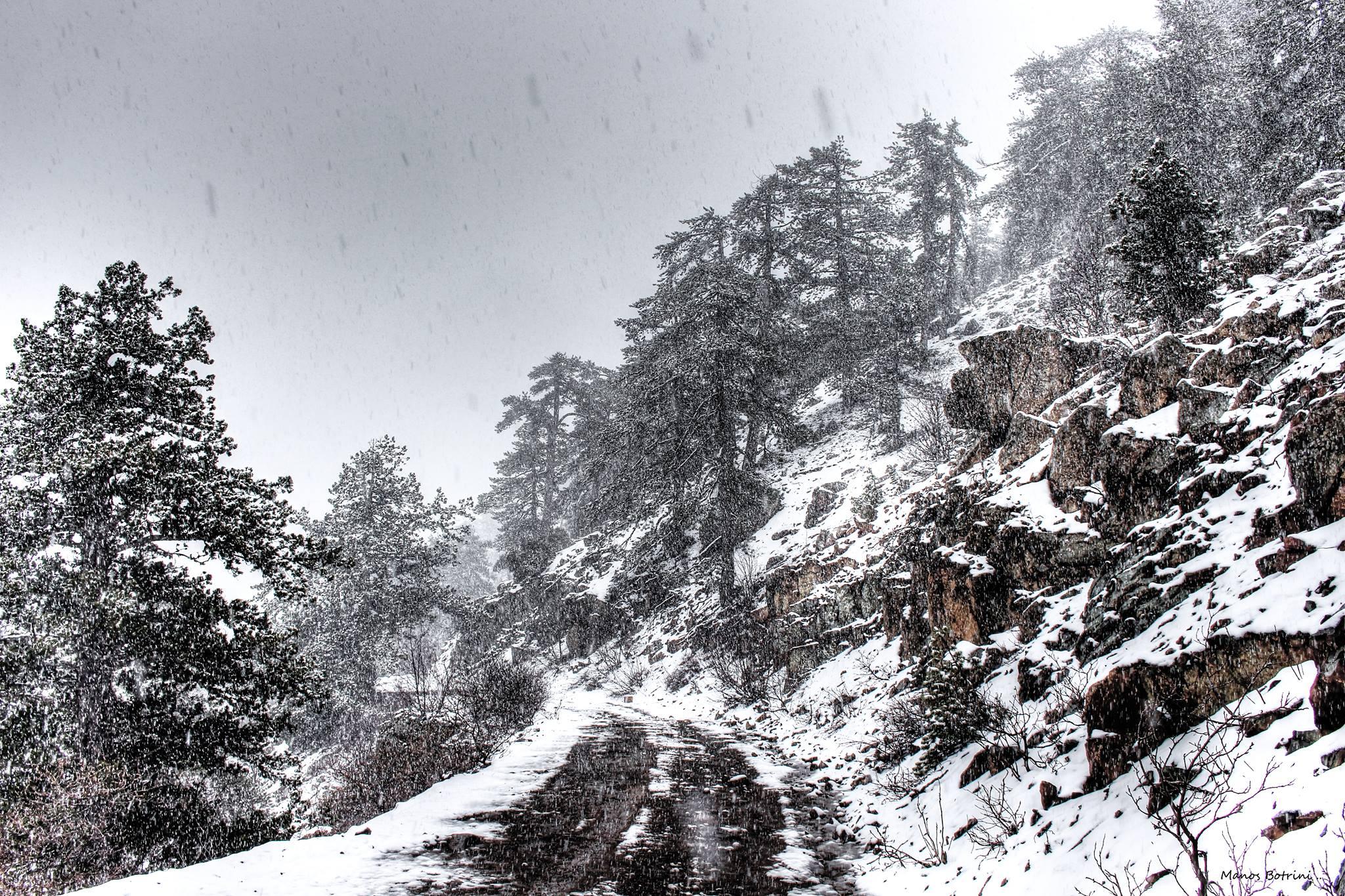 Trodos'tan Kar Manzaraları galerisi resim 6