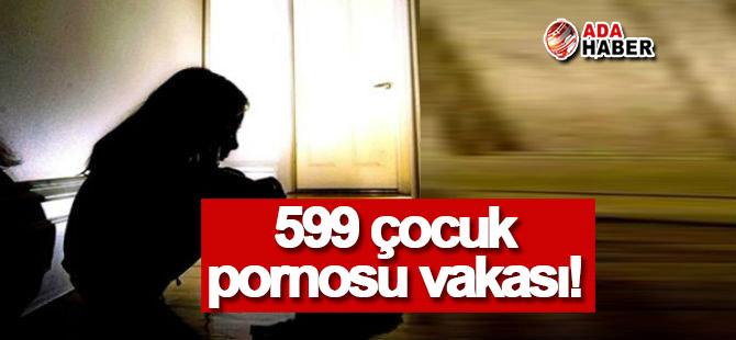 4 yılda 599 çocuk pornosu vakası