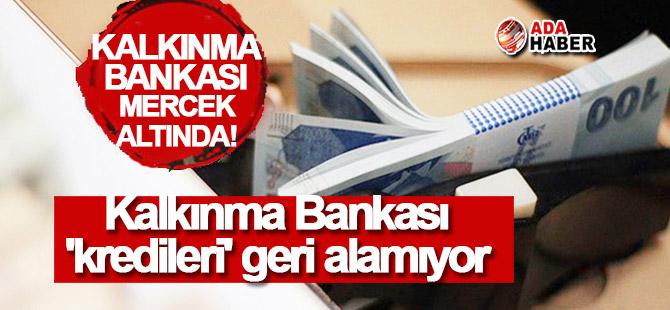 Kalkınma Bankası 'kredileri' geri alamıyor!