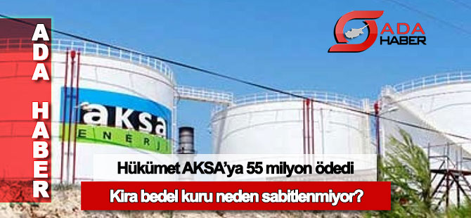 Hükümet AKSA'ya 55 milyon TL ödedi