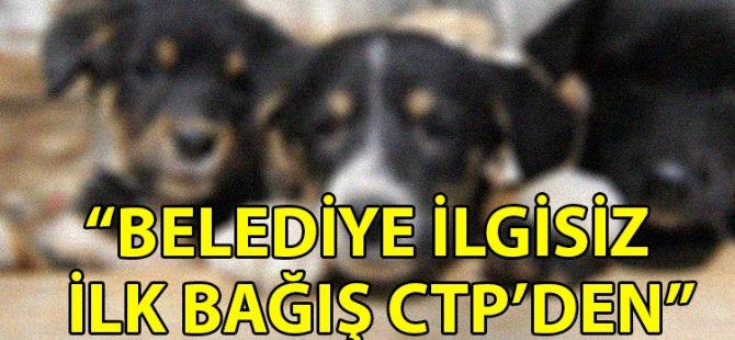 Güzelyurt Hayvanları Koruma Derneği'ne ilk bağış CTP'den