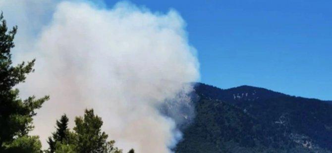 Güney'deki yangında 4 kişi hayatını kaybetti!