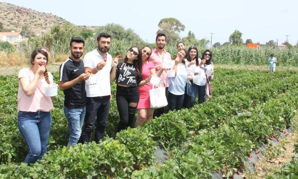 İlim Üniversitesi öğrencileri, Yeşilırmak Çilek Festivaline katıldı