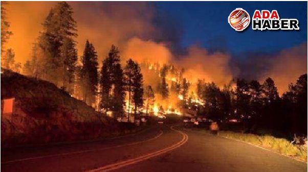 """Orman yangınlarına karşı """"insansız kule projesi"""" gündemde"""