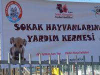 Sokak Hayvanlarına Yardım Kermesi