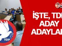 TDP aday adayları belli oldu