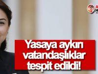 Bakan: Yasaya aykırı vatandaşlıklar tespit ettik!