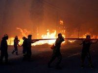 Orman yangınında ölü sayısı yükseldi
