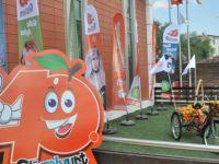 Güzelyurt Portakal Festivali başlıyor